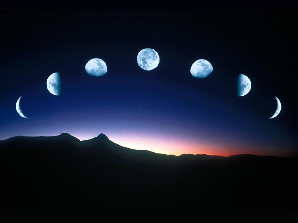 Чем занимается Lunar Embassy